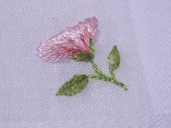 bouton de fleur de pommier